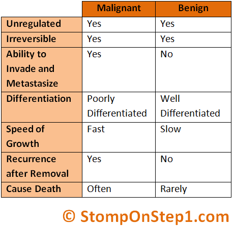 the difference between a benign and a malignant brain tumor What is the difference between benign and malignant difference between brain tumor and brain cancer difference between cancer cells and normal cells difference.