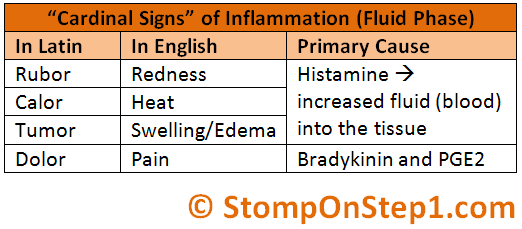 4 cardinal signs of inflammation and causes